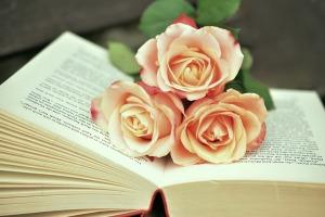 book-1771073_1920